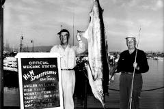 162 1951 Marlin 140 Locke J San Diego