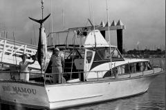 173 1967 Marlin 141 Moore Mrs H Catalina