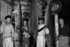 22 1930s Marlin 4 ea Newendorp et al Long Beach